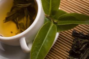 Grüner Tee Fettverbrennung