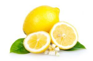 Zitrusfrüchte sind durch das Vitamin C gut für den Stoffwechsel